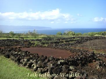 2008_hawaii_halekulani_christmas__2